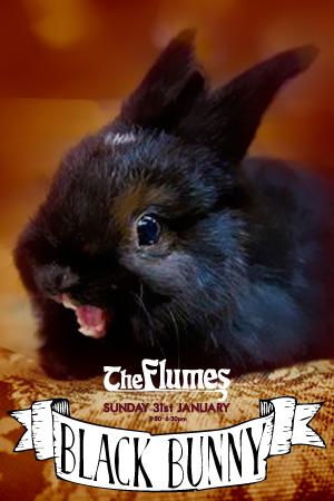 the-flumes-black-bunny-kitchen-sun31jan-1